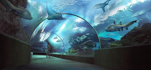 Бангкок-Тур с океанариумом
