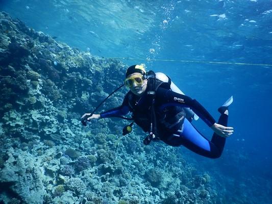Дайвинг для новичков на дальних островах в Паттайе